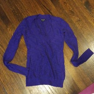 Royal purple vneck sweater